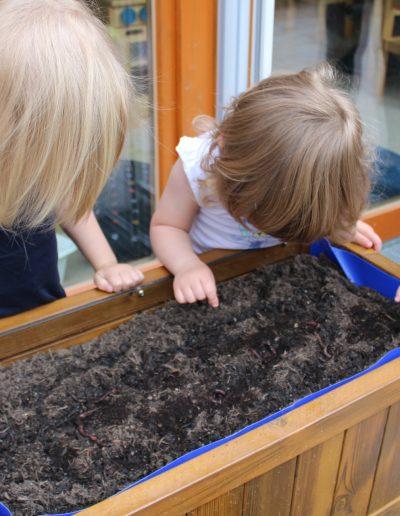 Kinder schauen sich Würmer an